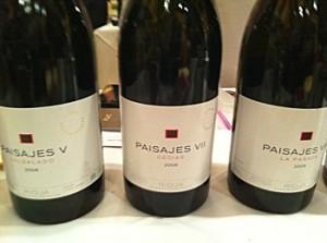 Paisajes Wines