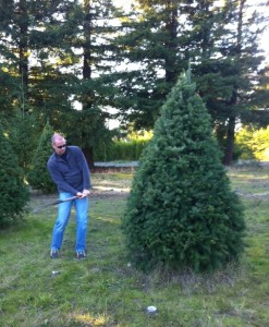 Scott cutting Christmas Tree