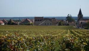 Vosne Romanee Burgundy