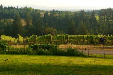 Northern Willamette Valley Oregon