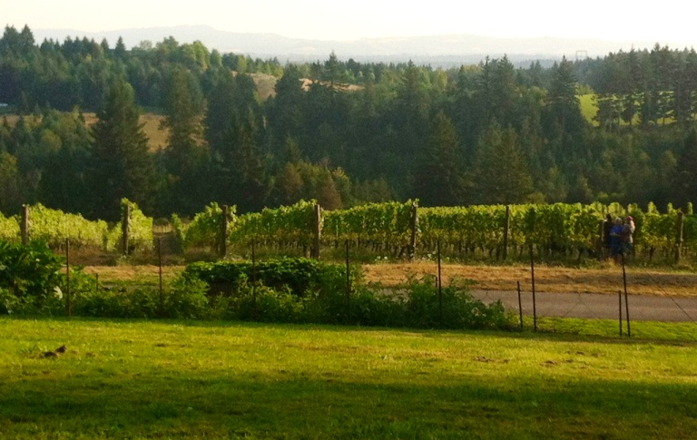 Northern Willamette Valley Oregon