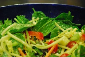 Salad with Garlic Lemon Vinaigrette