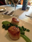 Franciscan Scallops