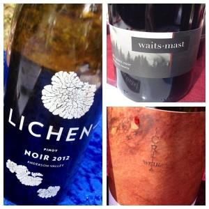 Passionate Pinot Noirs from Mendocino