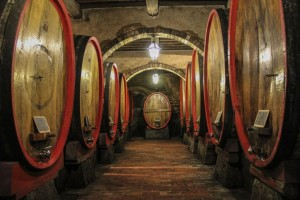 Carpineto Barrel Room